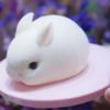 Moule silicone lapins 3D 4
